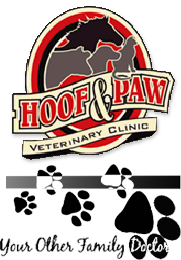 Hoof and Paw Veterinary Clinic